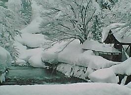 新潟県魚沼-2006